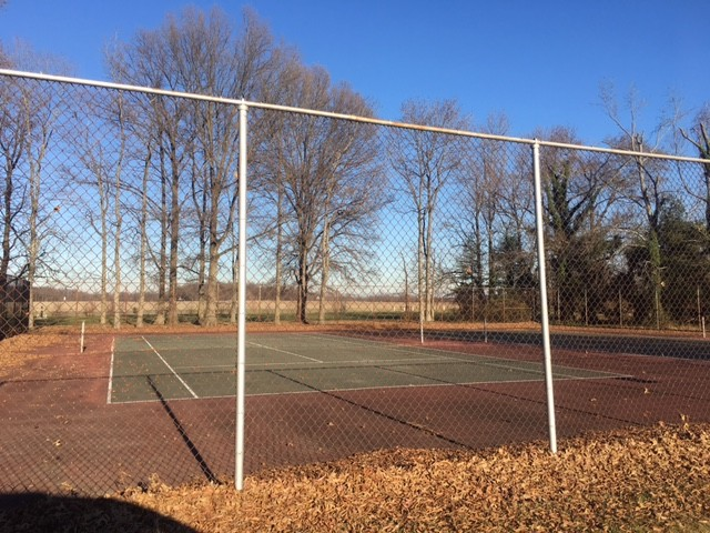 Tennis courts int he park