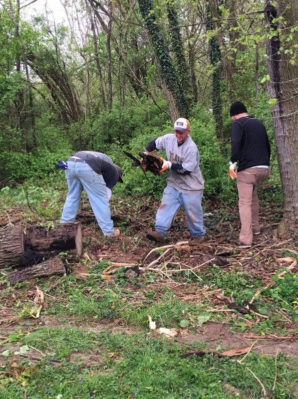 Three men removing logs and tree debris from wooded area